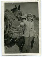 Fotografía histórica com.carmesi.servicios.objetos.FotoMunicipio@1f74200